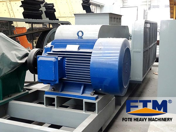 Tppthed roll crusher in factory